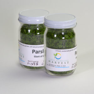 Click to enlarge Dried Parsley (Giant of Italy)