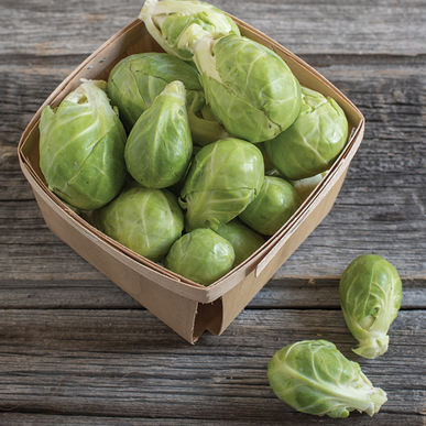 Click to enlarge Brussels sprouts