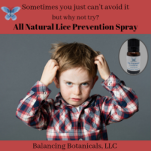 Click to enlarge Lice Prevention Concentrate