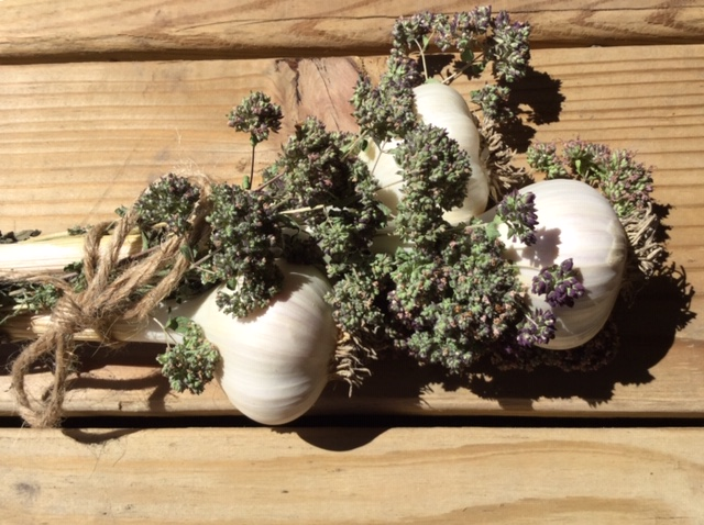 Click to enlarge Garlic bundles with dried herbs (medium)