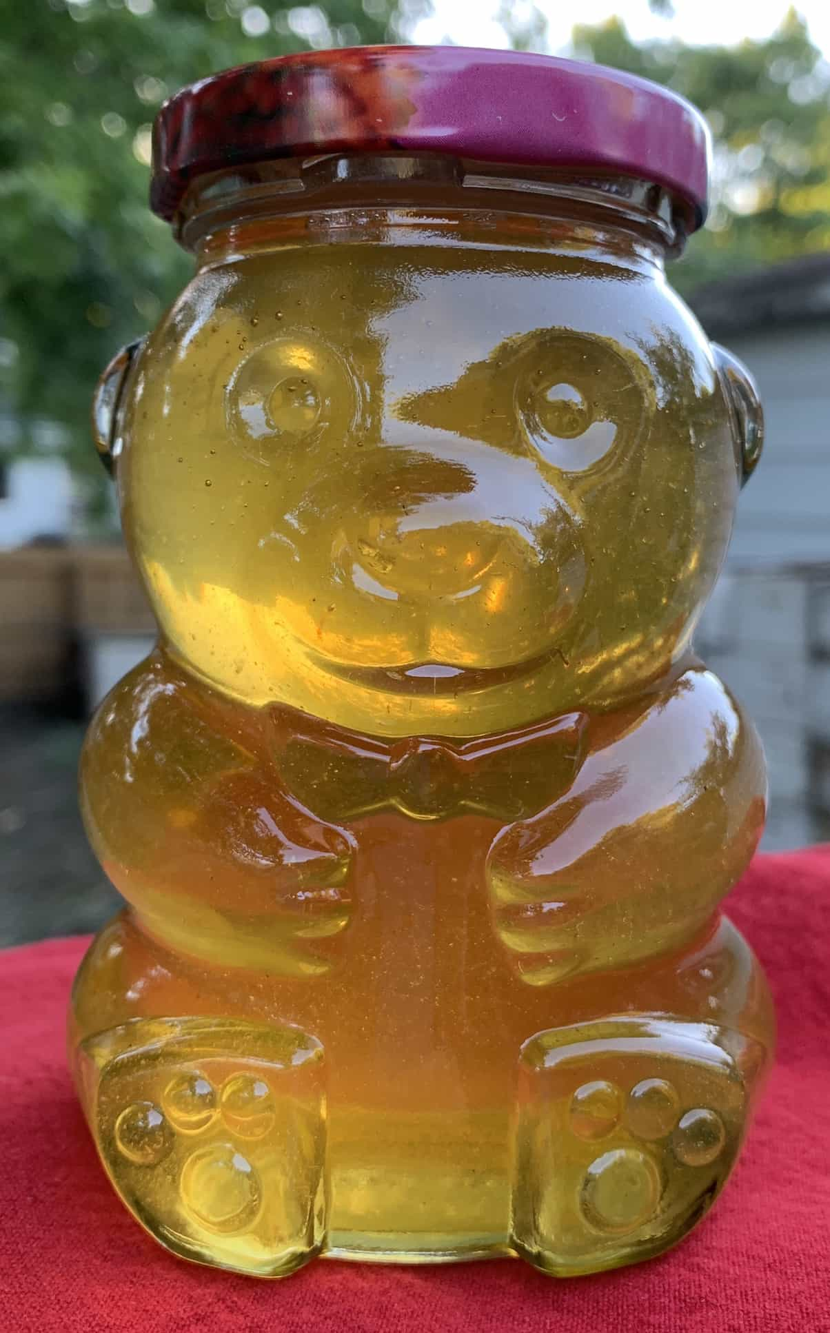 Click to enlarge Pure Raw Honey - (c) 13 oz glass honey bear