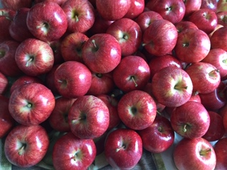 Click to enlarge Gala Apples