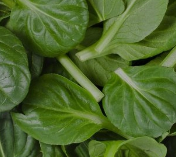 Click to enlarge Spinach