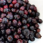 Click to enlarge Certified Organic Frozen Aronia Berries