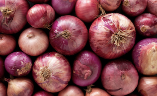 Click to enlarge Red Wing Onions Certified Organic