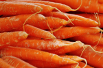 Click to enlarge Certified Organic Carrots 1 lb bag #2