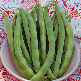 Click to enlarge Kentucky Wonder Bush Bean Seed Packet