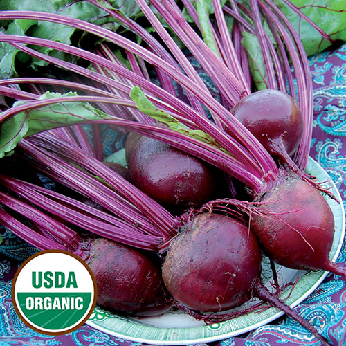 Click to enlarge Detroit Dark Red Beet Seed Packet (Certified Organic)